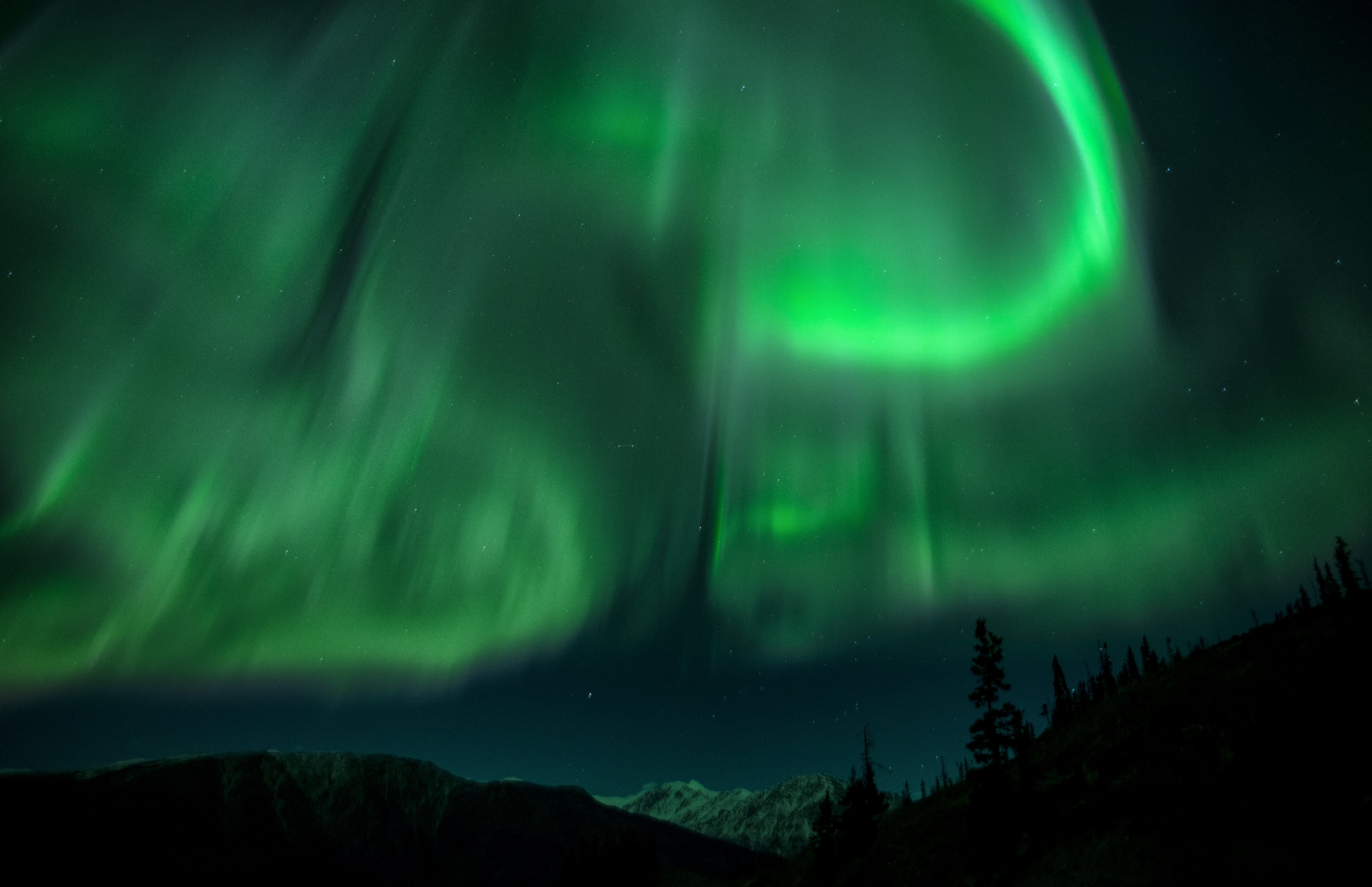 lady aurora.jpg