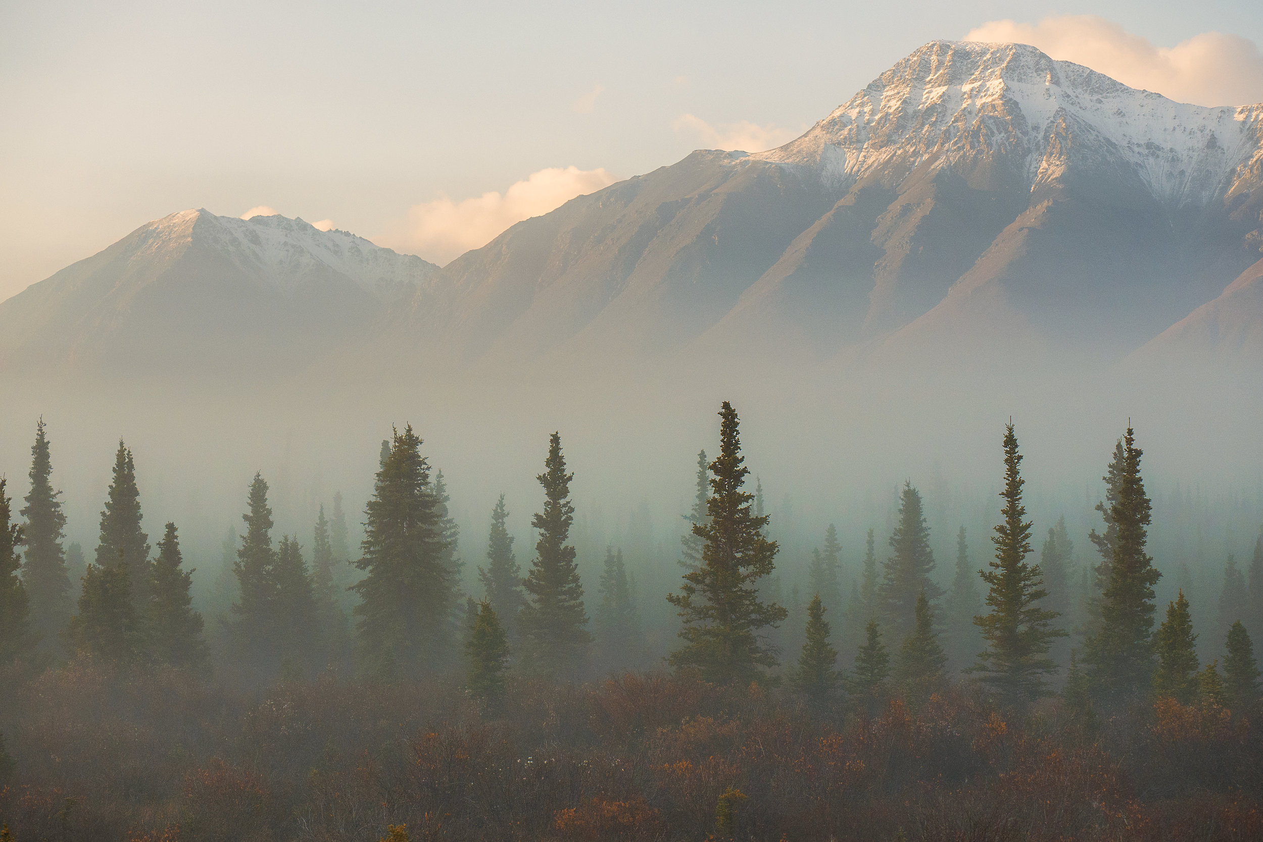 fog along the Alaska highway in Yukon by Chris Pepper