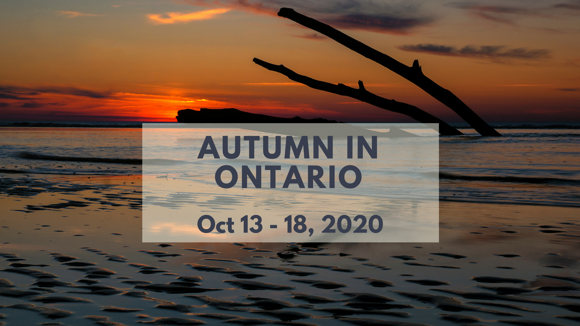 Fall Colours in Ontario 2020