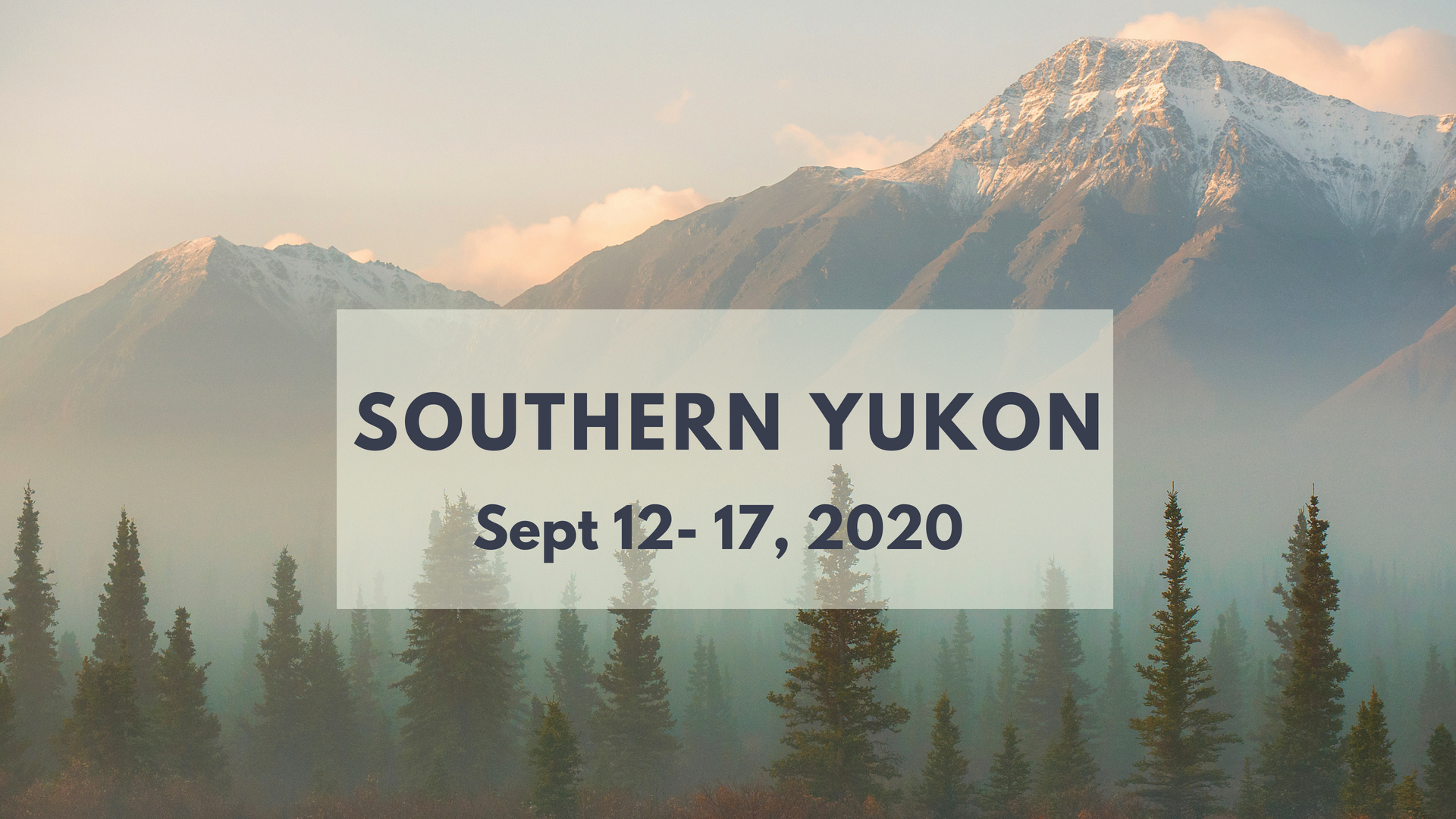 Fall Colours + Aurora Photo Tour in Yukon