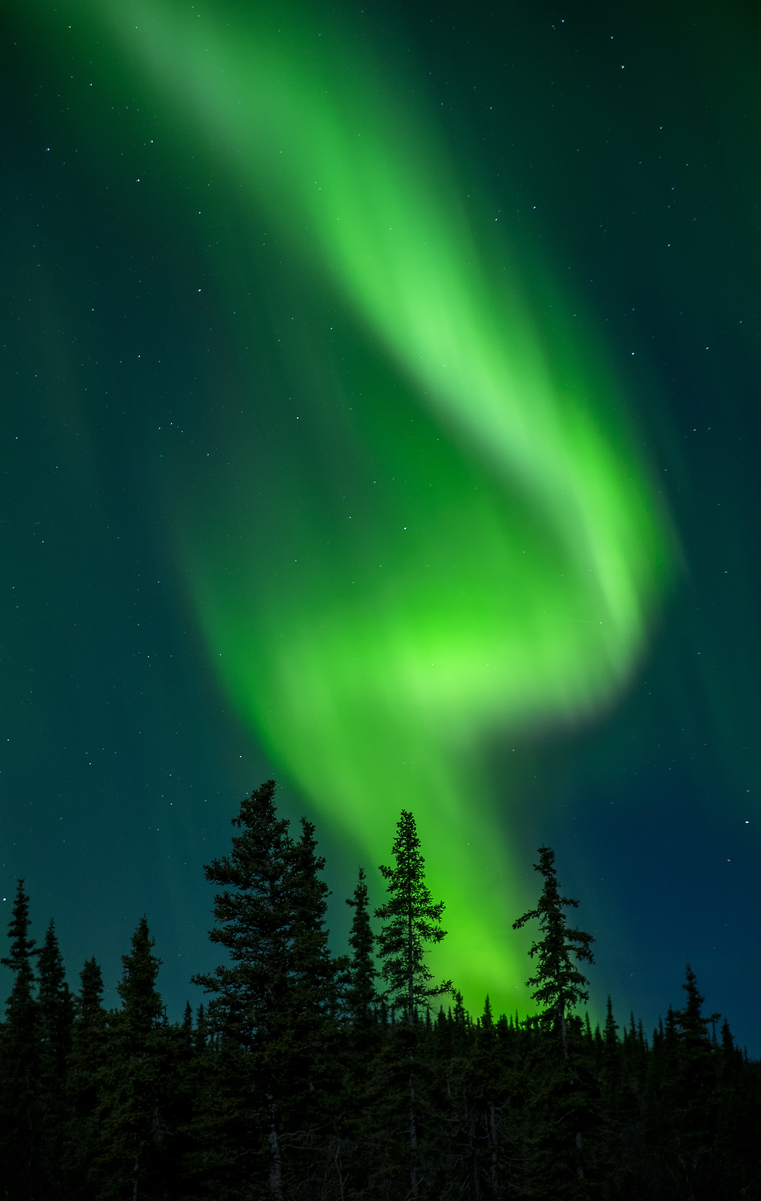 northern lights photography workshops
