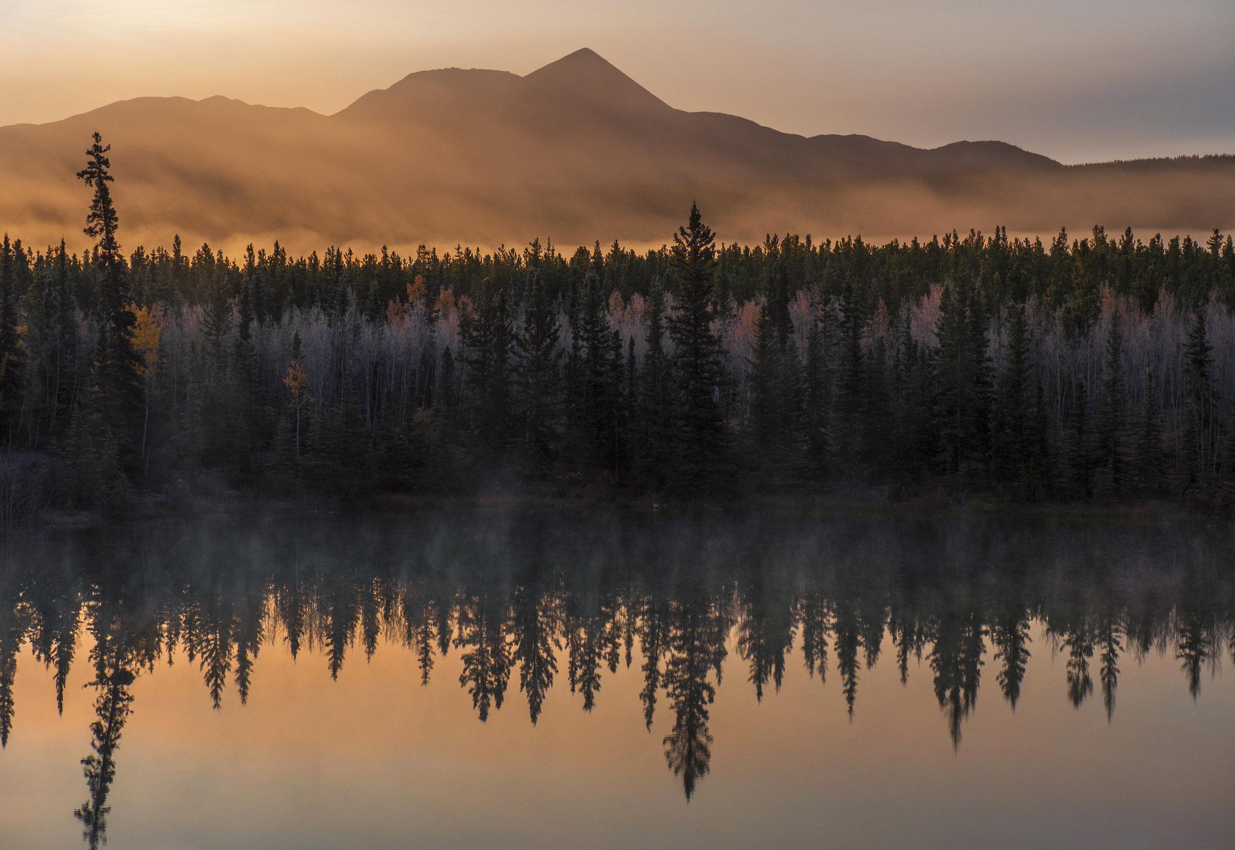 Best of Yukon Photography workshop