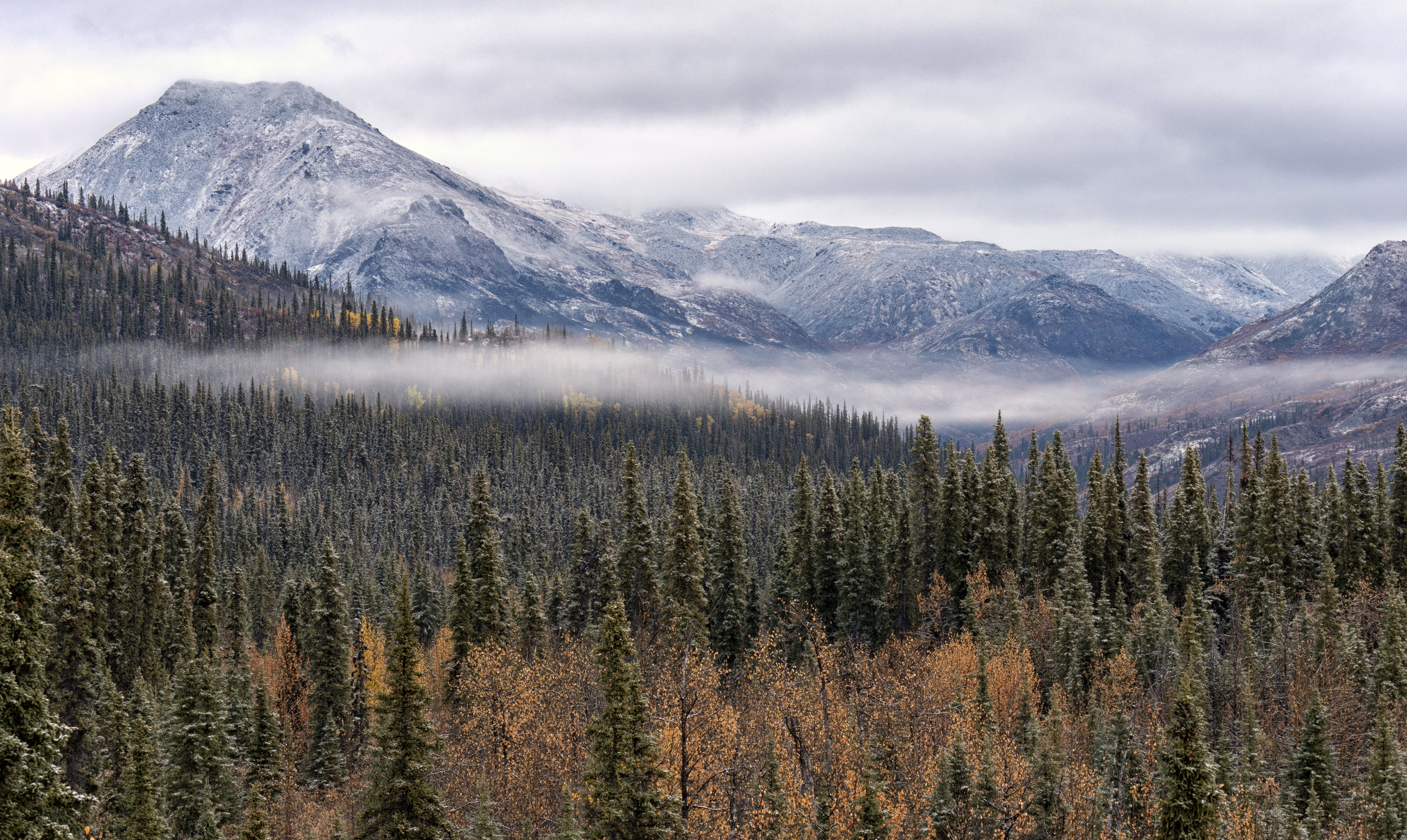first shot on the dempster highway.jpg