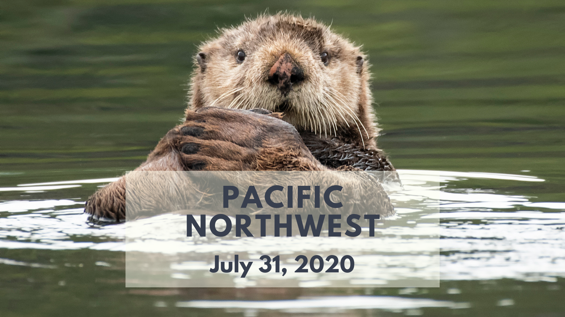 Pacific Northwest Photography Workshop