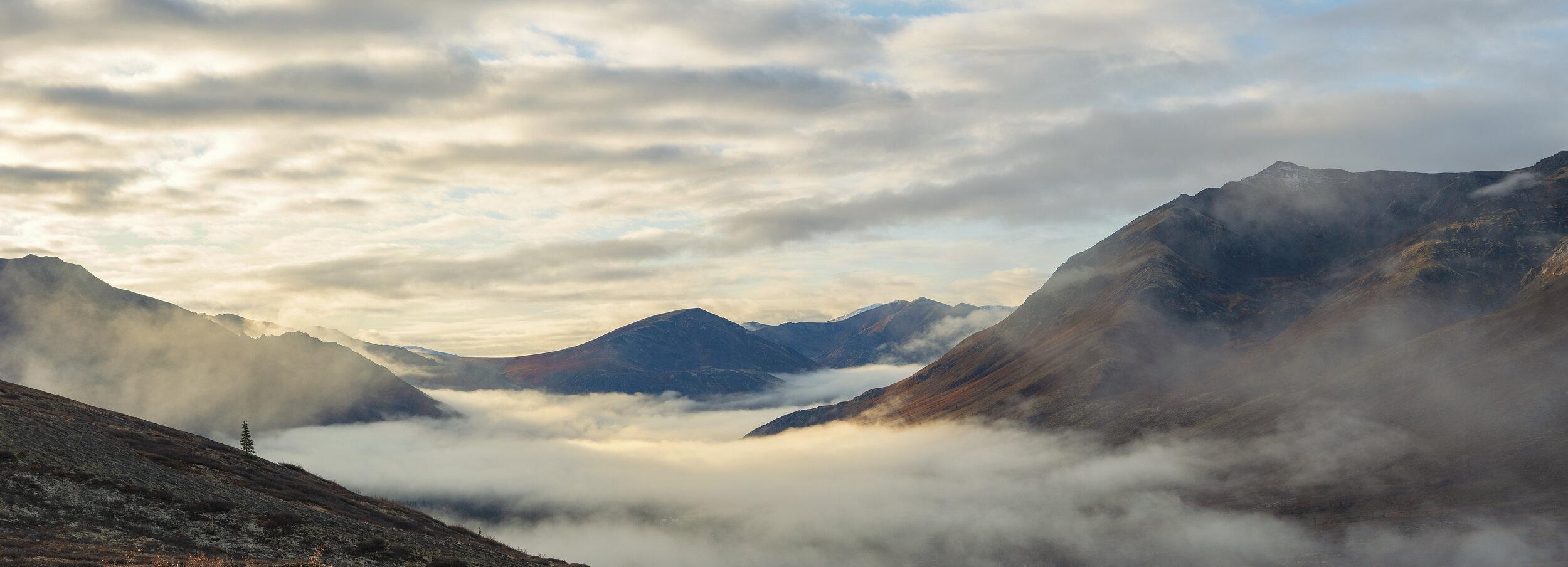 Foggy mornings in Yukon