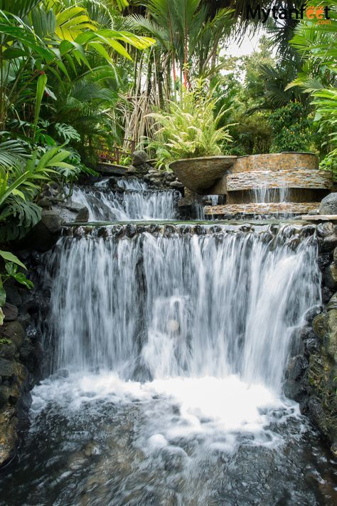 https-::mytanfeet.com:activities:things-to-do-in-la-fortuna-and-arenal:.jpg