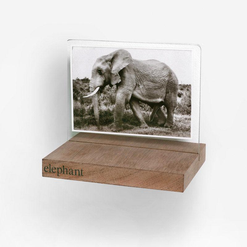 Julia Tiffin  elephant, 2000  Hahnemühle FineArt Baryta 350 gsm print,  clear glass, wood, vinyl lettering  Image: 10.5 x 15.3 cm, Artwork: 16.3 x 15 cm  Edition: 10