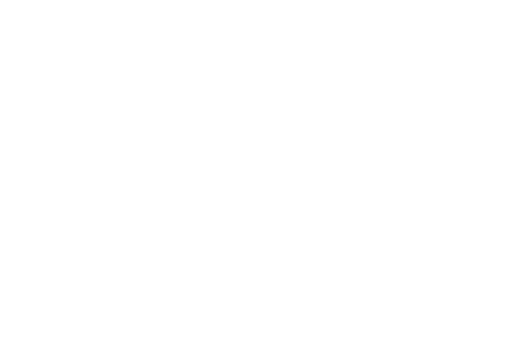 WEB SERIES FESTIVAL - WINNER BUDGET UNDER 5000 - 2018.png