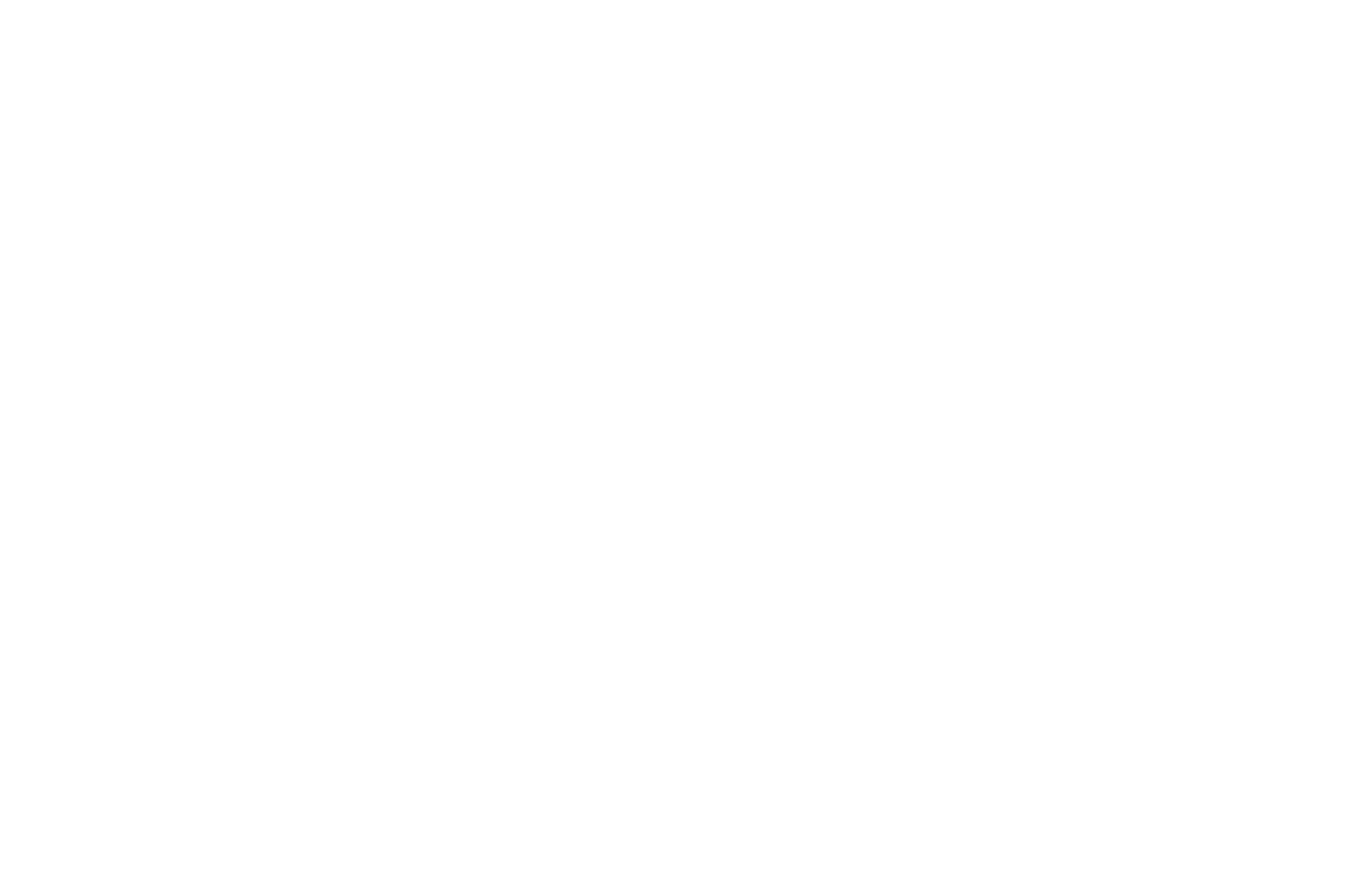 OFFICIAL SELECTION - LDS FILM FESTIVAL - 2017.png