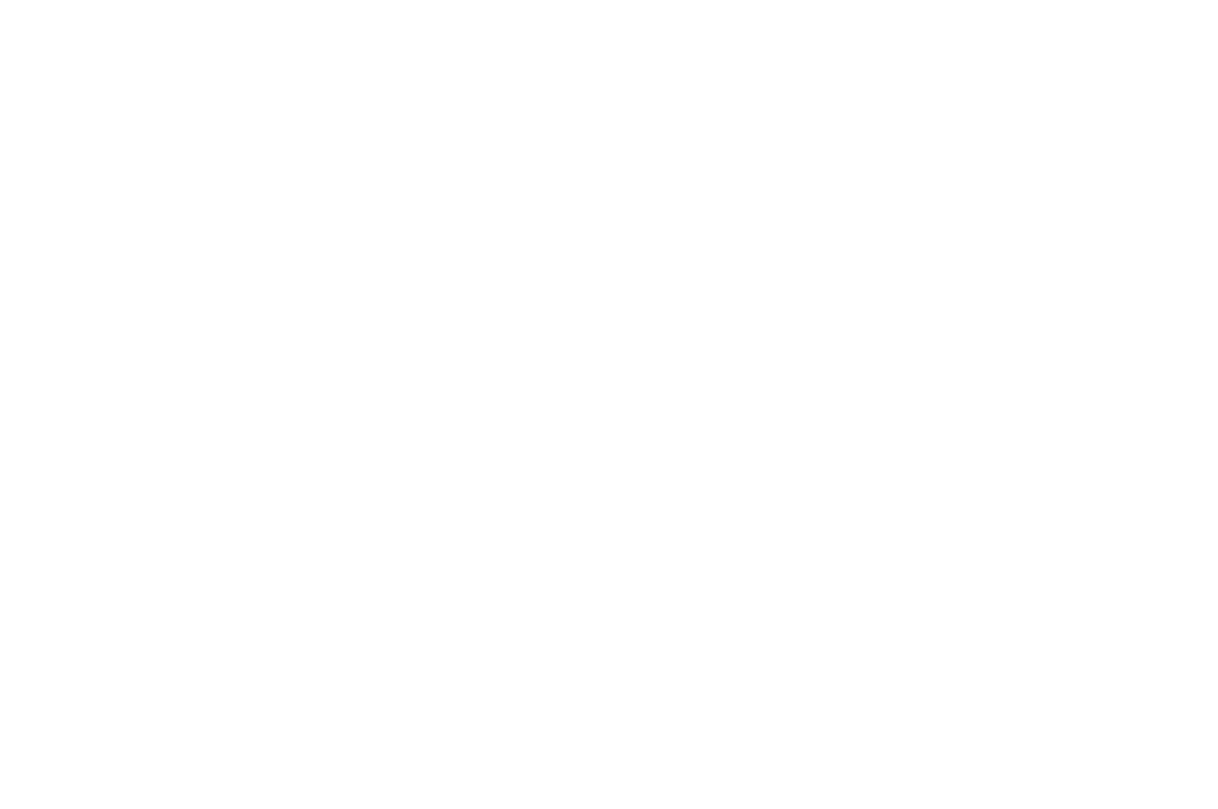 OFFICIAL SELECTION - Web Series Festival - 2018.png