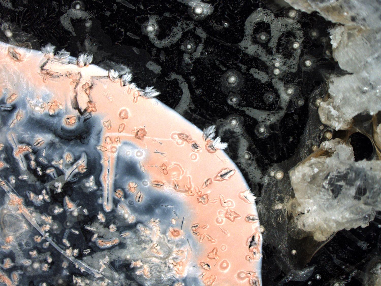 "Other World 2   Microscopy digital image mounted on photoboard 12"" x 16"" 2013"