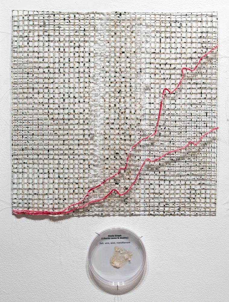 """Ebola Graph - Liberia grown salt crystals, wool, wire, agar, halobacteria, agar, petri dish 20"""" x 20"""" 2015"""