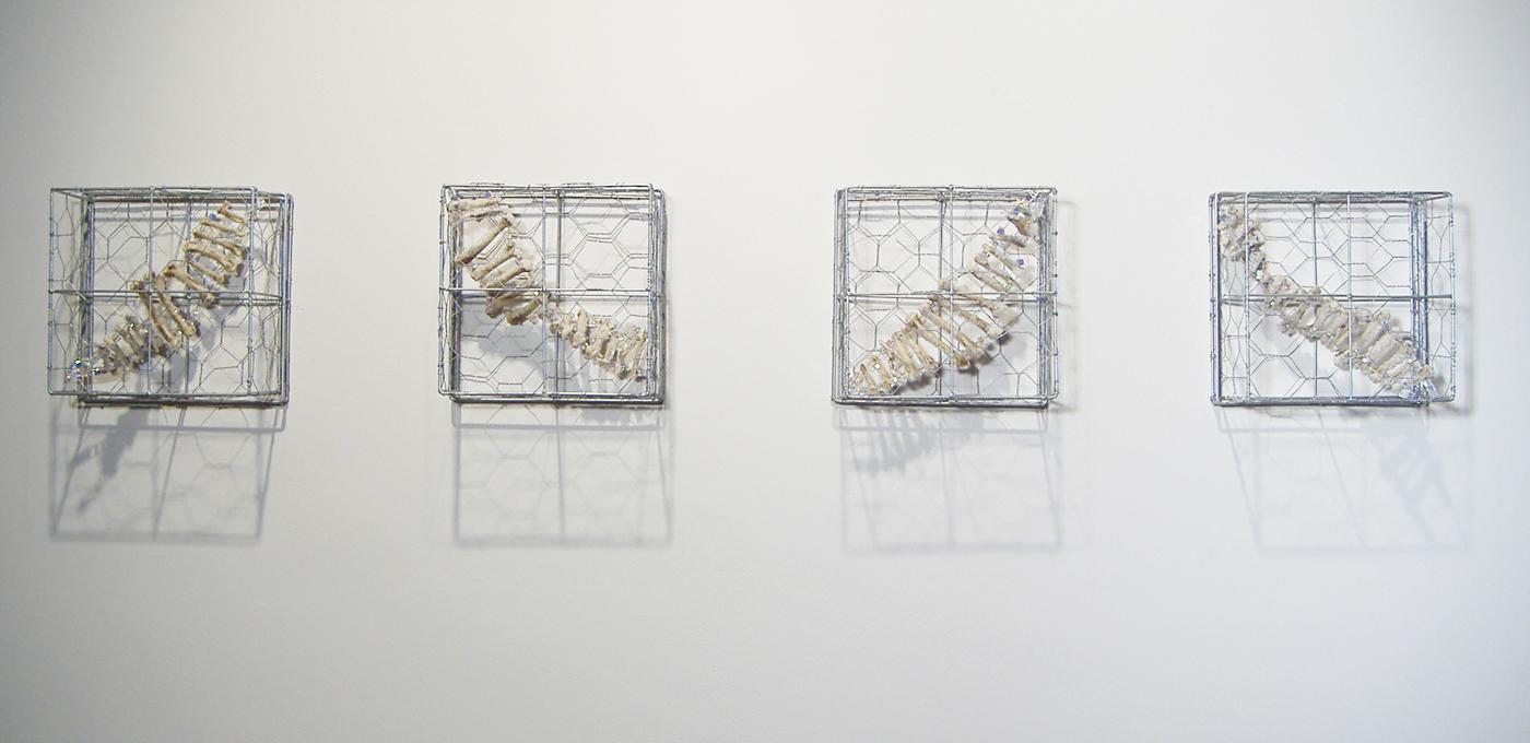 """Zoonosis  Chicken wire, chicken bones, beads, and grown salt crystals 68"""" x 10"""" x 5"""" 2006"""