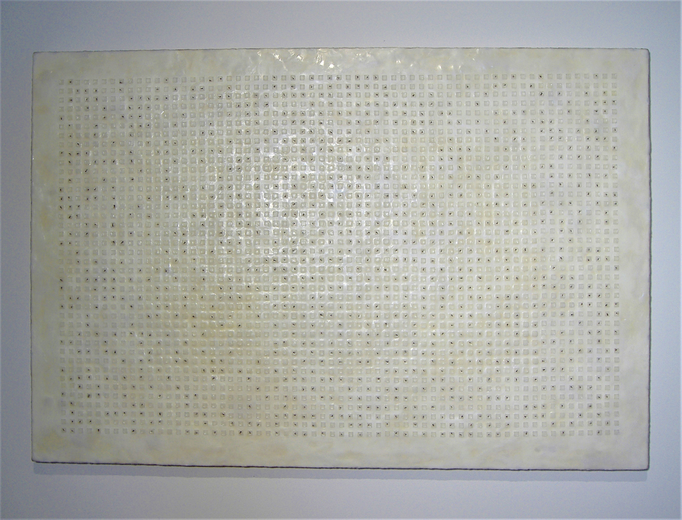 """The Swarm Wax, pigment, and mosquitoes 60"""" x 40"""" 2006"""