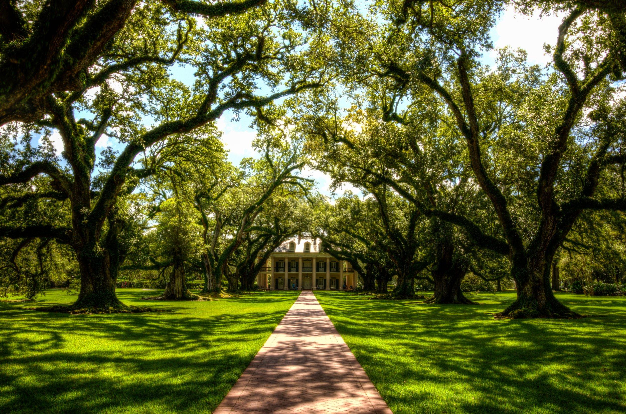 Louisiana Culture - Expressed in film