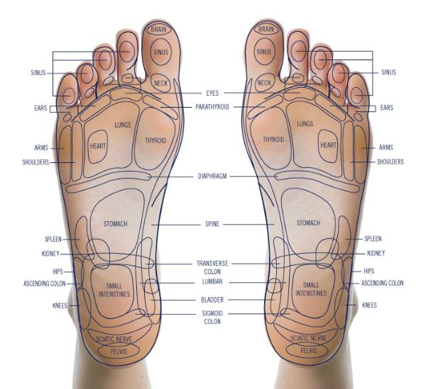 reflexology-foot.png