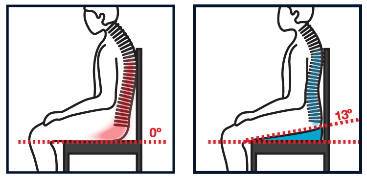 eze-back-seat-spine.png