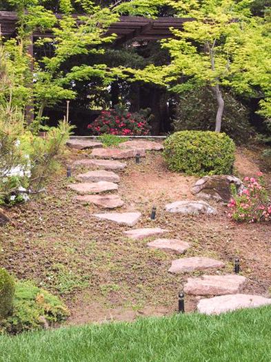 andy-aki-gardens-026.jpg