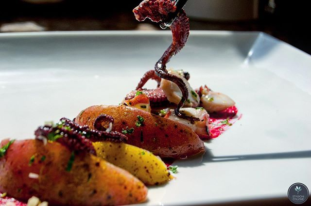 Meyer #lemon #grilled #octopus with a hint of blood orange and a beet puree. ⁣⠀⁠⠀ .⁣⠀⁠⠀ .⁣⠀⁠⠀ .⁣⠀⁠⠀ .⁣⠀⁠⠀ .⁣⠀⁠⠀ .⁣⠀⁠⠀ #eeeeeats #delicious #seafood #sanfrancisco #fresh #photooftheday #yum #bayarea #fish #funfriday⁣⠀⁠⠀ #f52grams #feedfeed #onmytable #truecooks #myopenkitchen #forkyeah #eattheworld #wine #travel #italy #fancy #italianstyle #finedining #cheflorenzobonissoni #ingredientsarelife #foodie⁣⠀