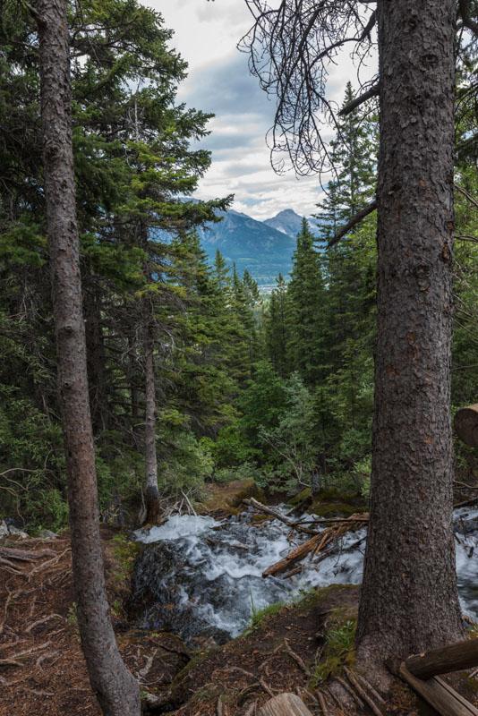 waterfall, grassi trail