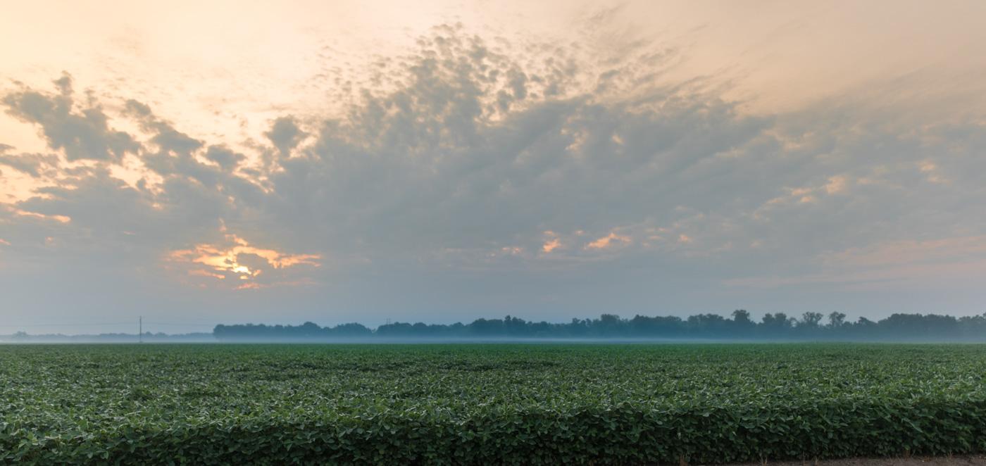 Illinois sunrise