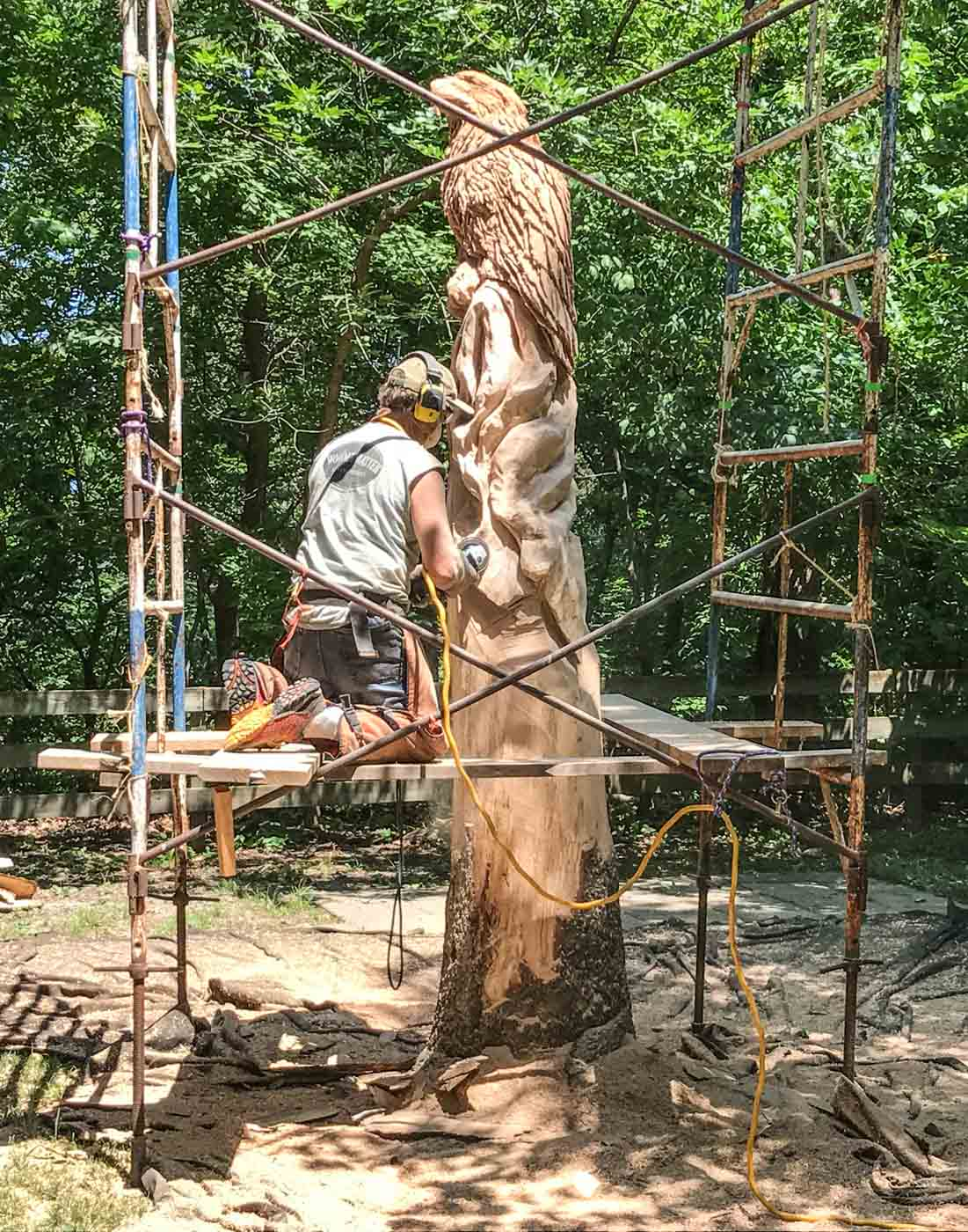 woodcarver at starved rock