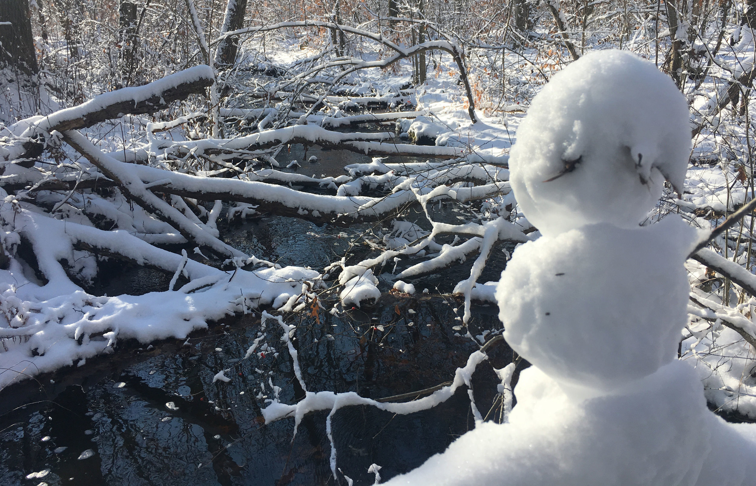 Another snowman keeping watch on the brook.