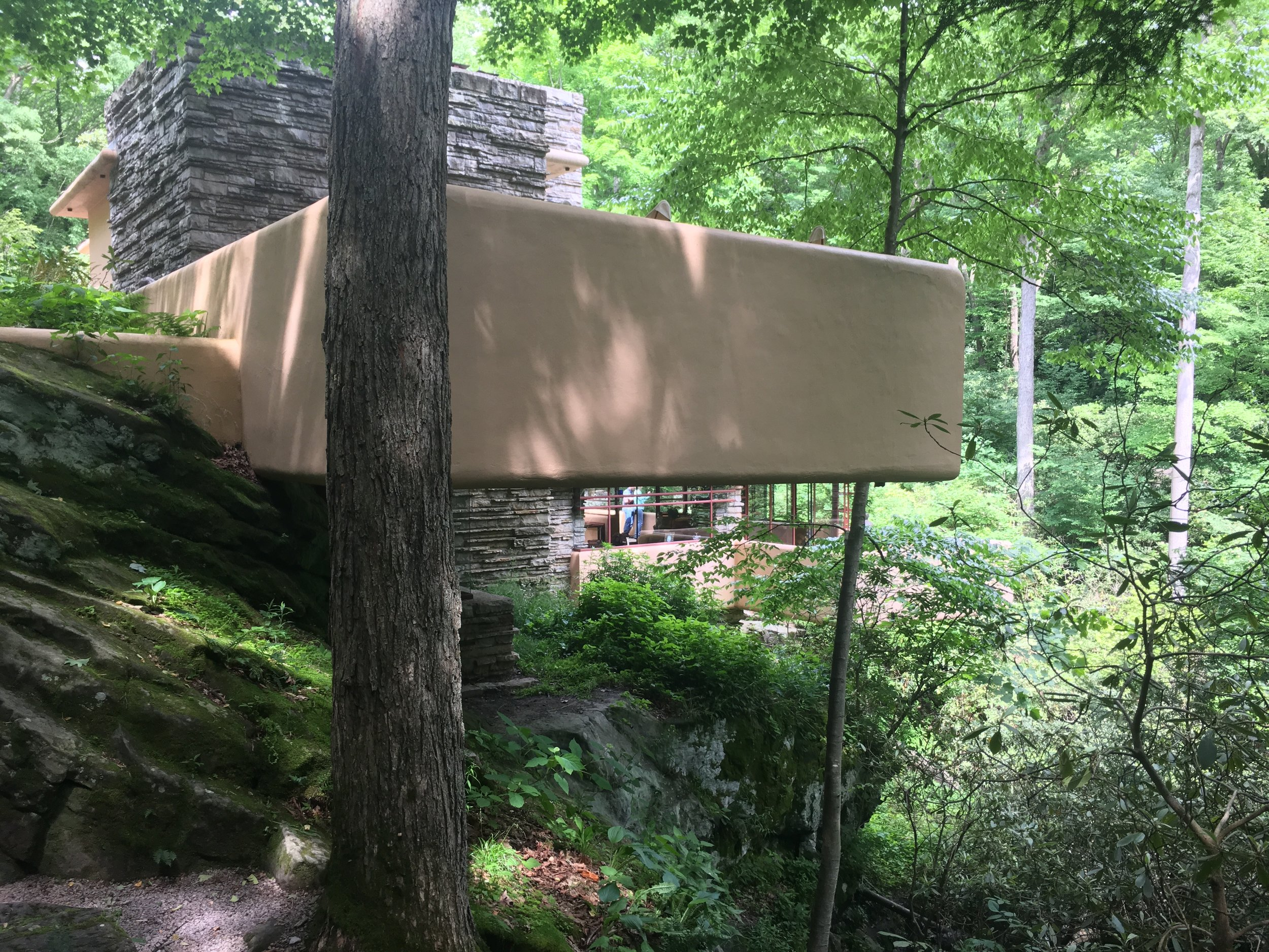 Fallingwater from the driveway