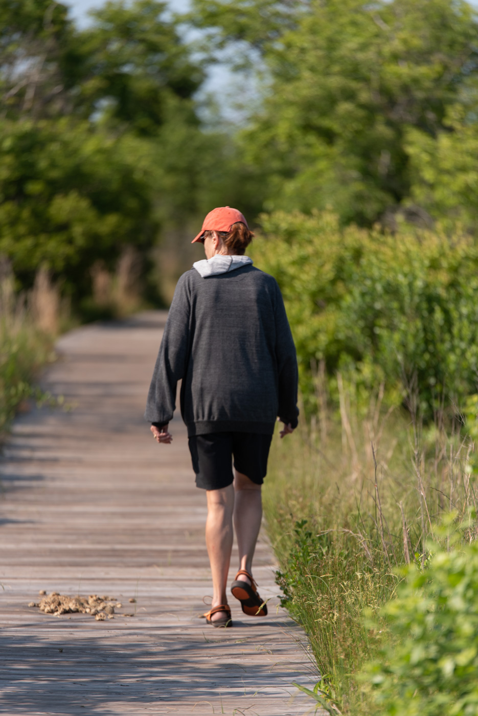 marsh hike