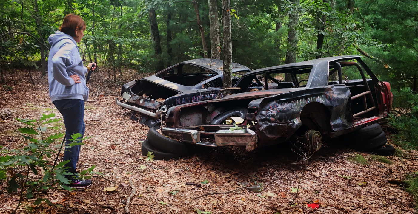 Race cars in the woods