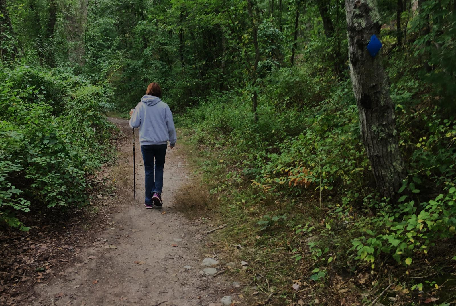 Blue dot trail