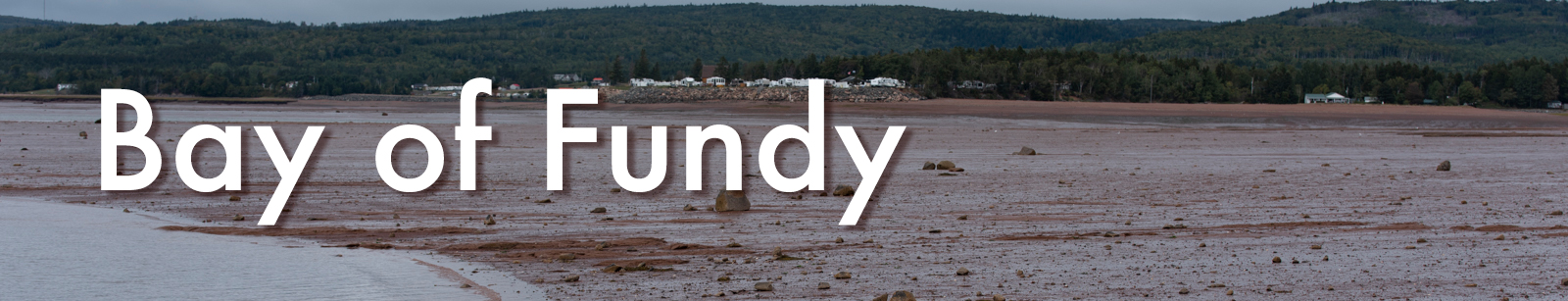 fundy-header.jpg