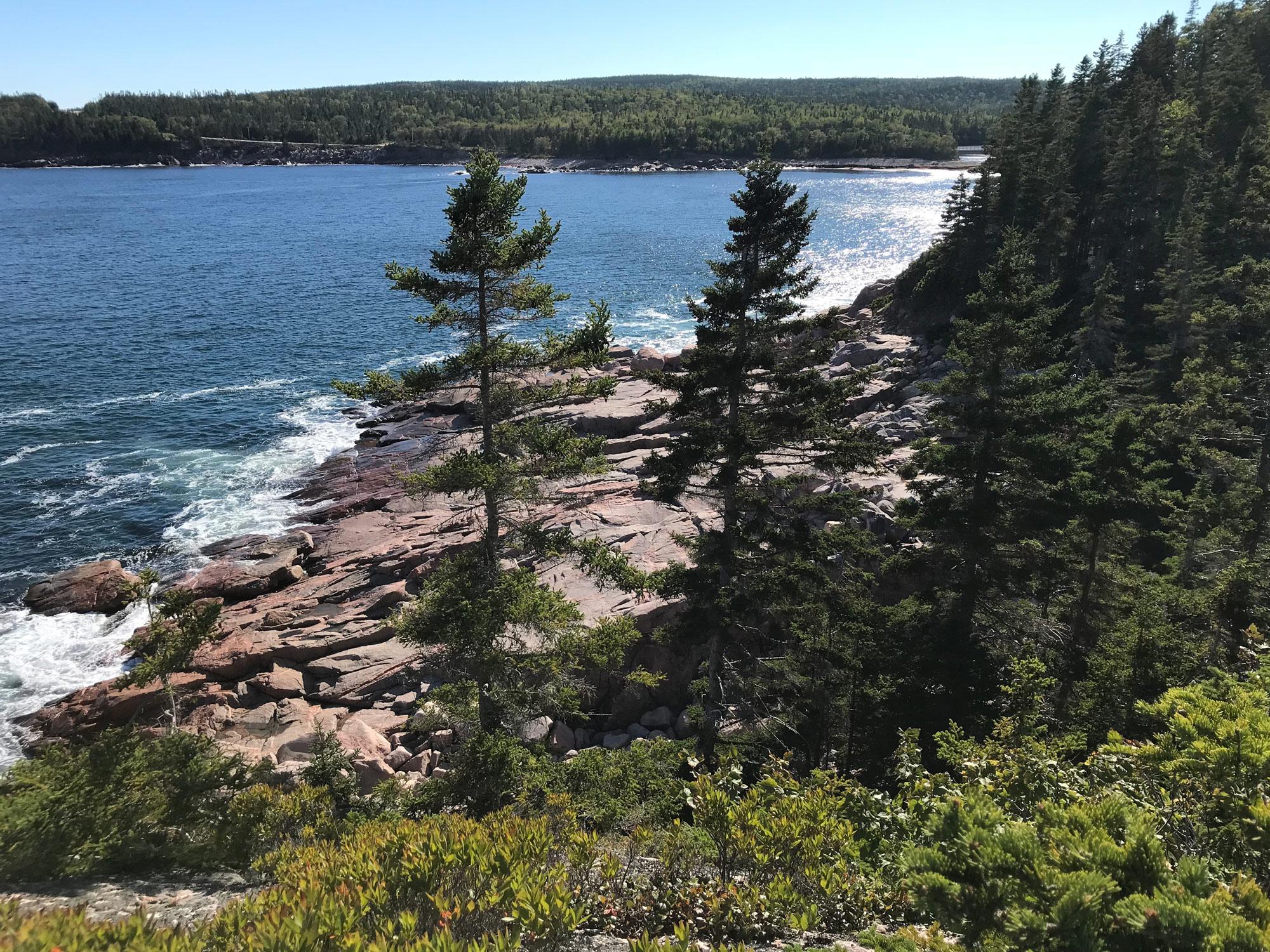 Along the Jack Pine / Coastal trail