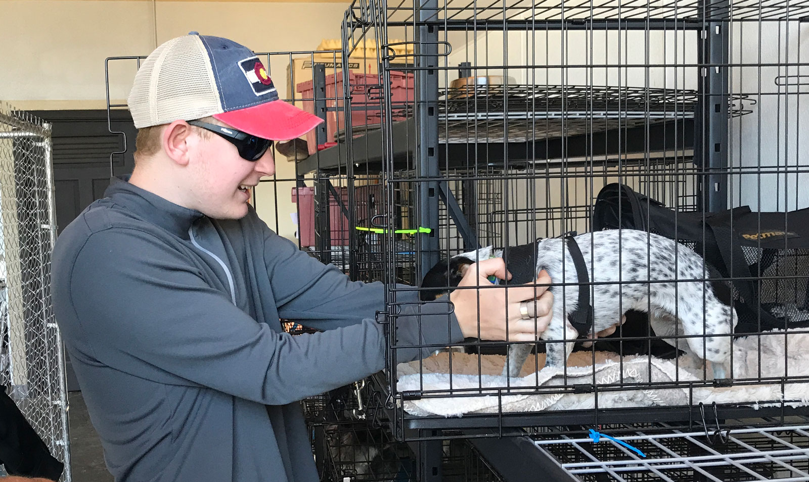 Retrieving Harper from the kennel
