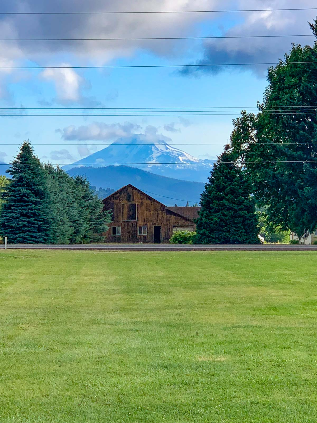 Mount Adams from WAAAM