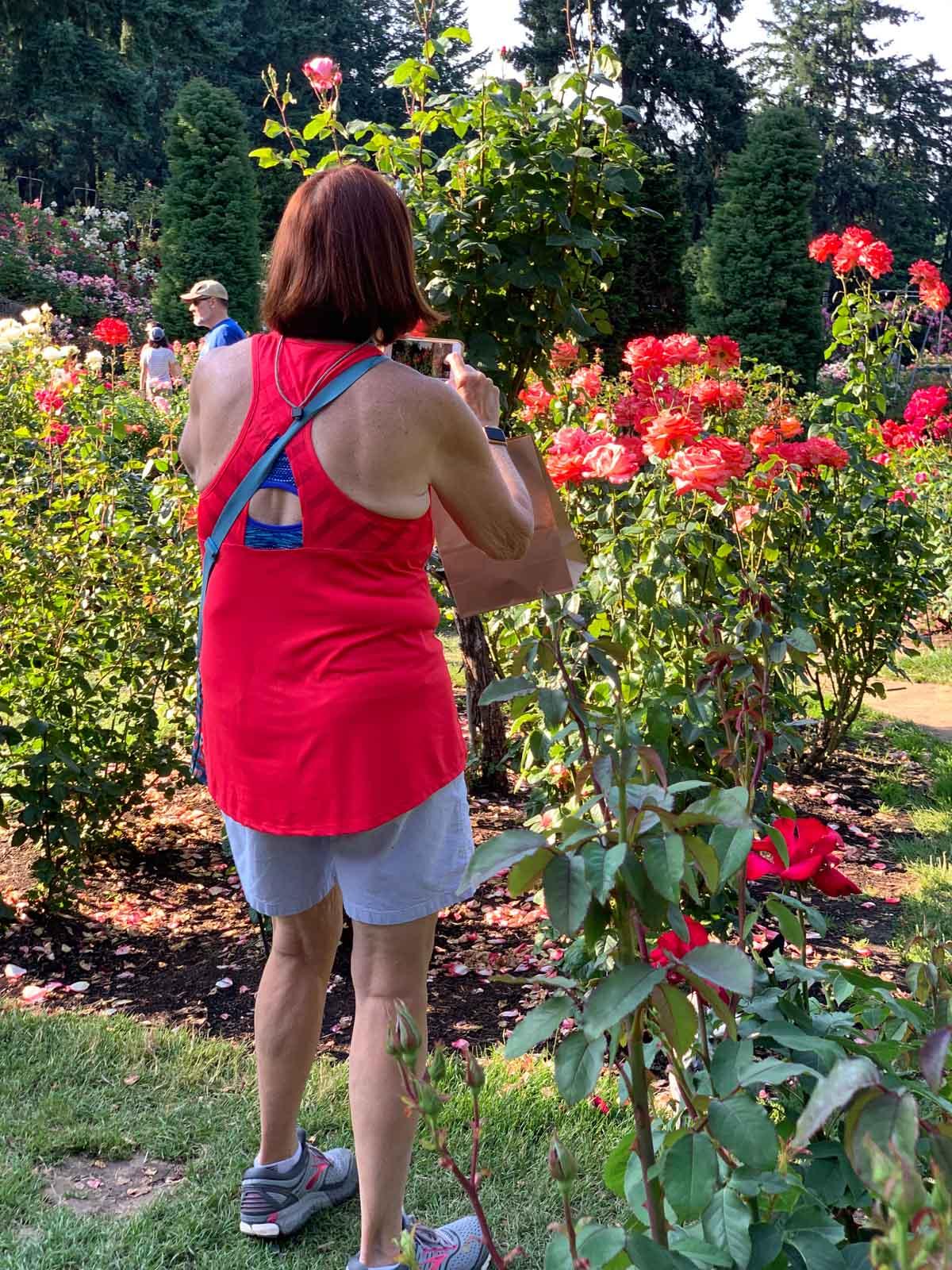 So many roses