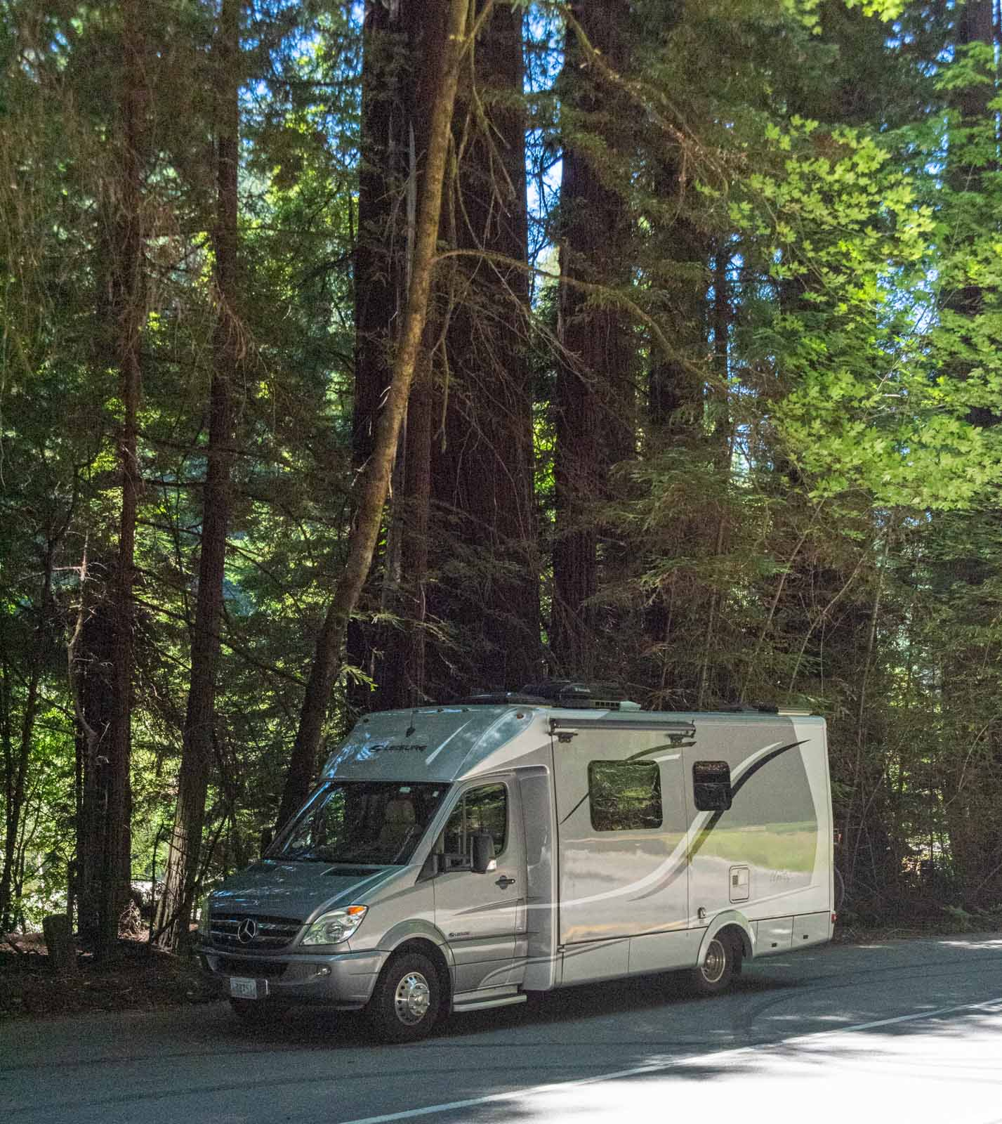 The Doodle, our Leisure Travel Van in the Redwoods