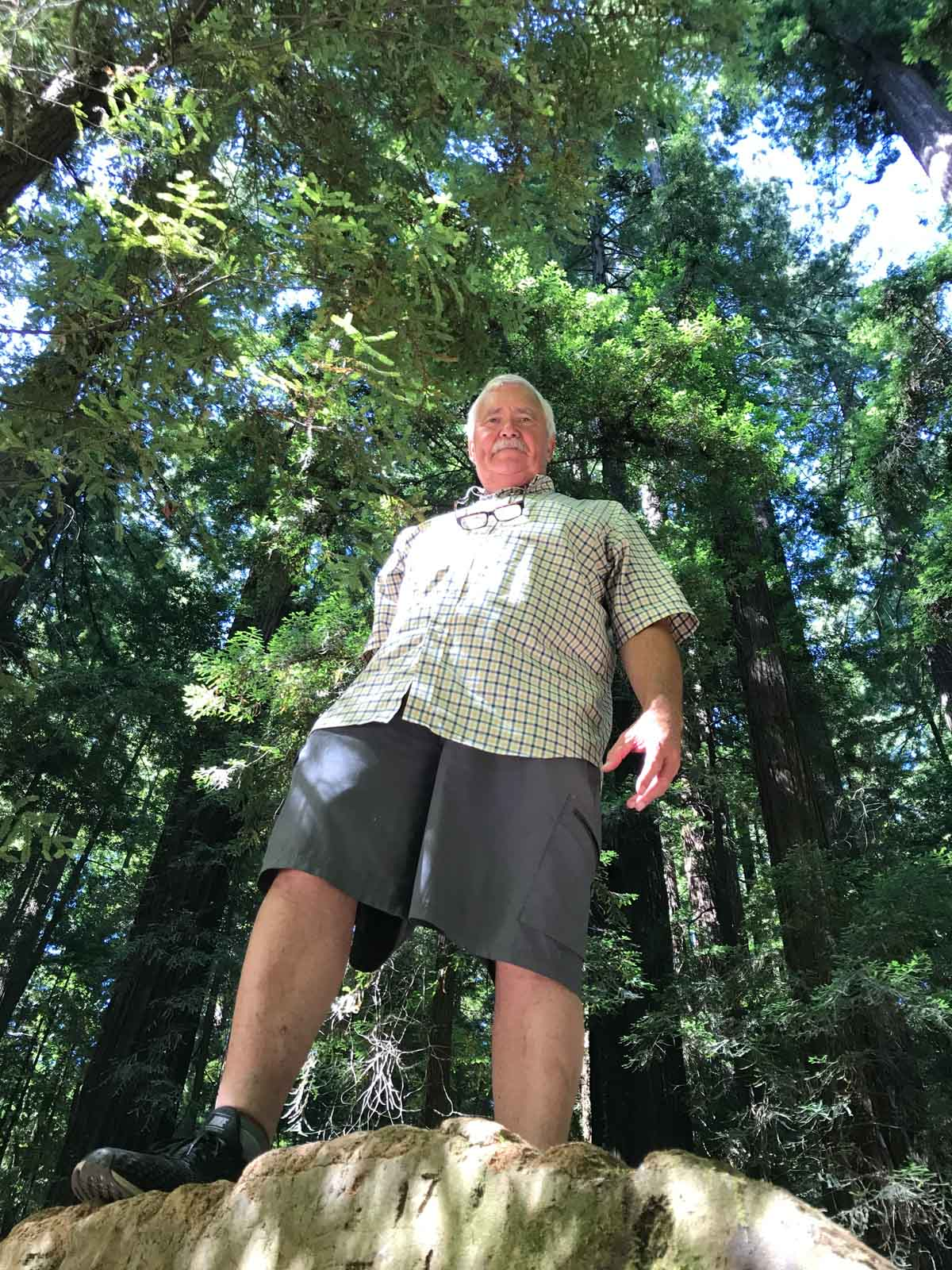 Standing on a huge log