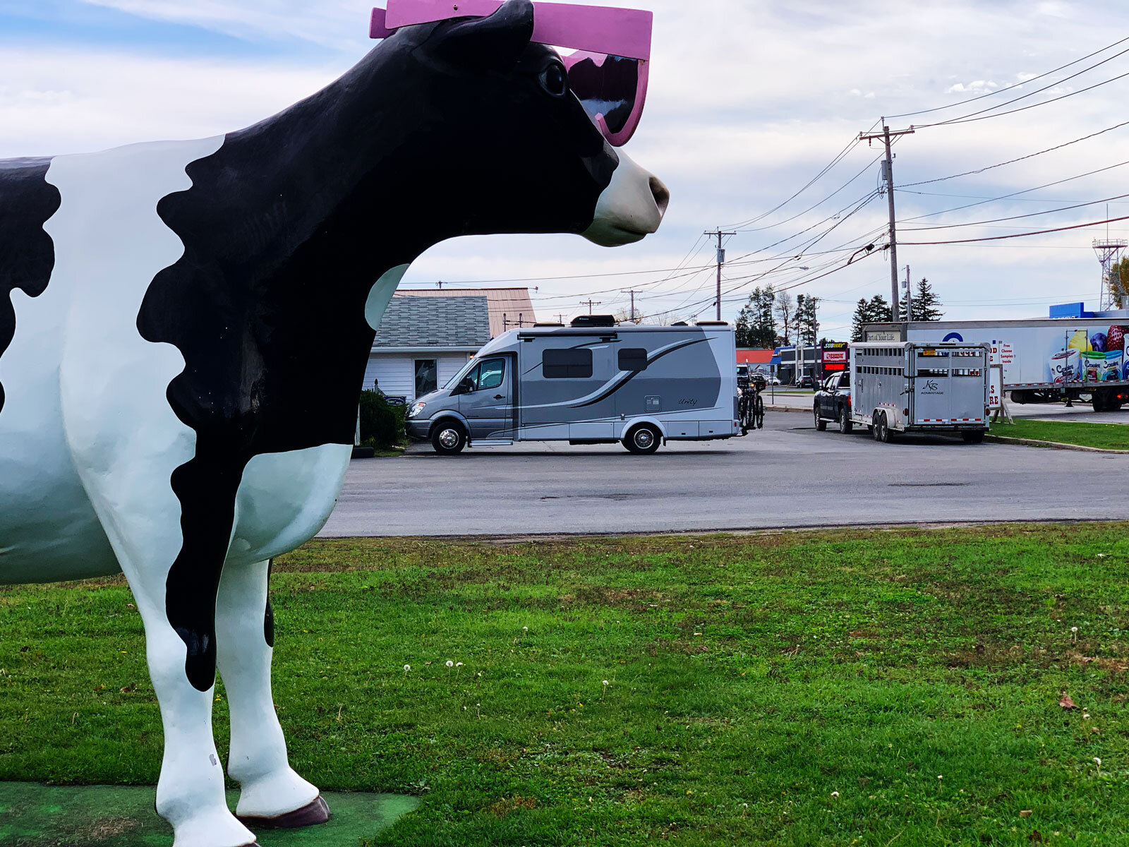 The Doodle and the Big Cow