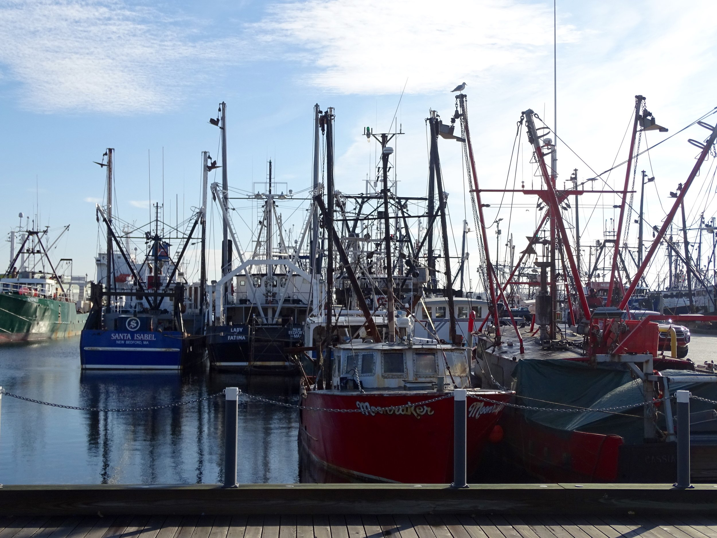 Some of the fishing vessels docked in the New Bedford Harbor.