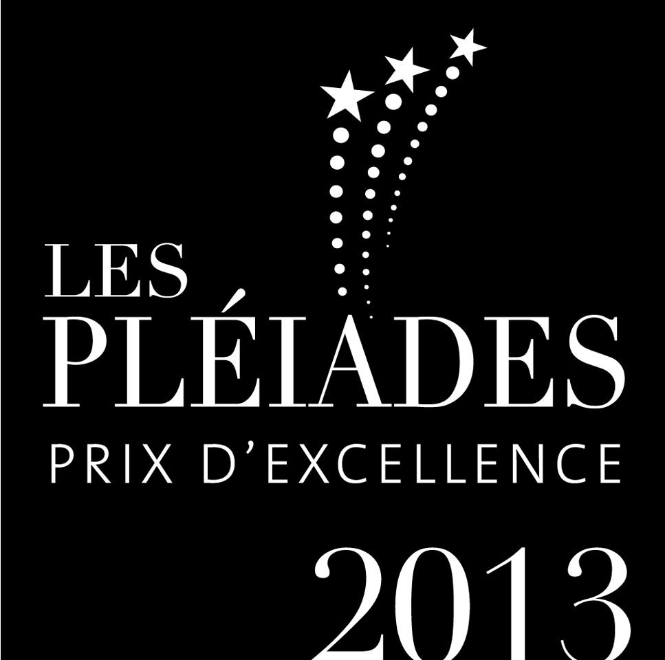 Logo Pleiade (1).jpg