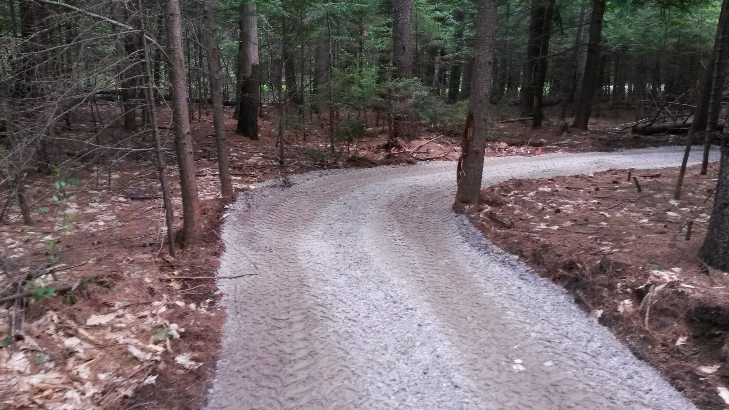 Valentine Farm Trail - EASY - This 1.2 mile universally accessible trail has a crushed gravel surface and meanders through woods and alongside fields offering views of the Androscoggin River. Perfect for people of all ages and abilities.