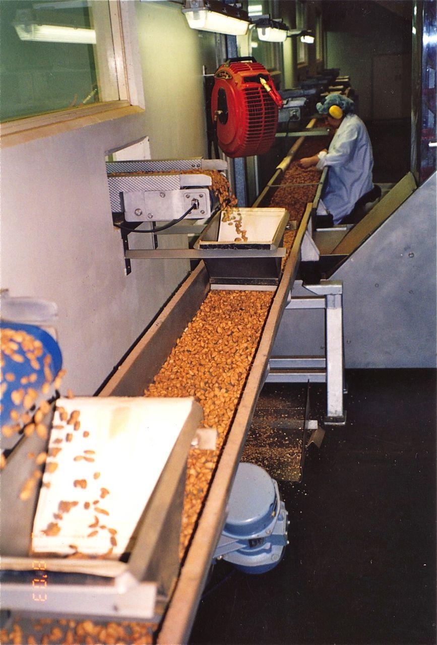 Almonds 8.jpg