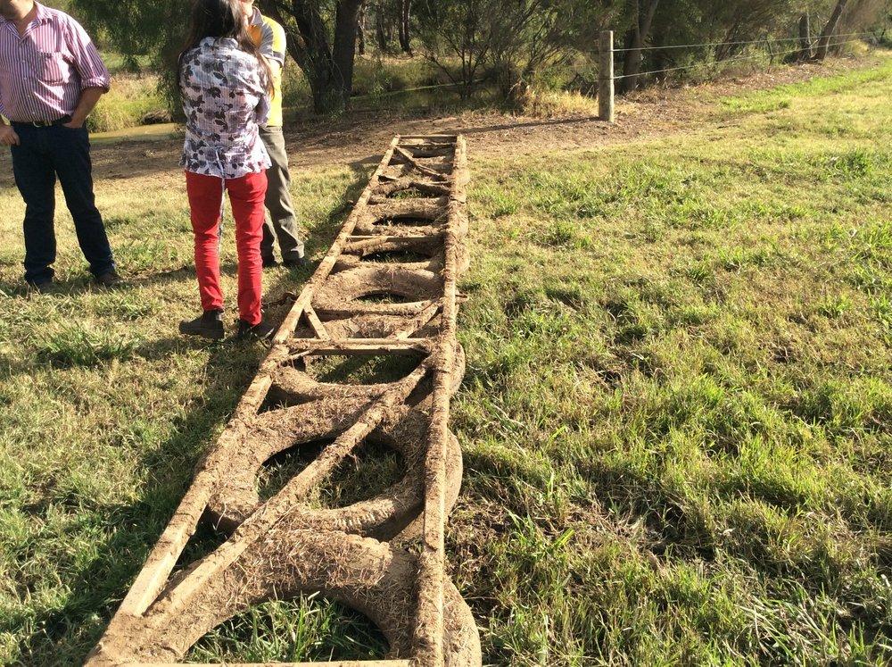 Homemade pasture harrows