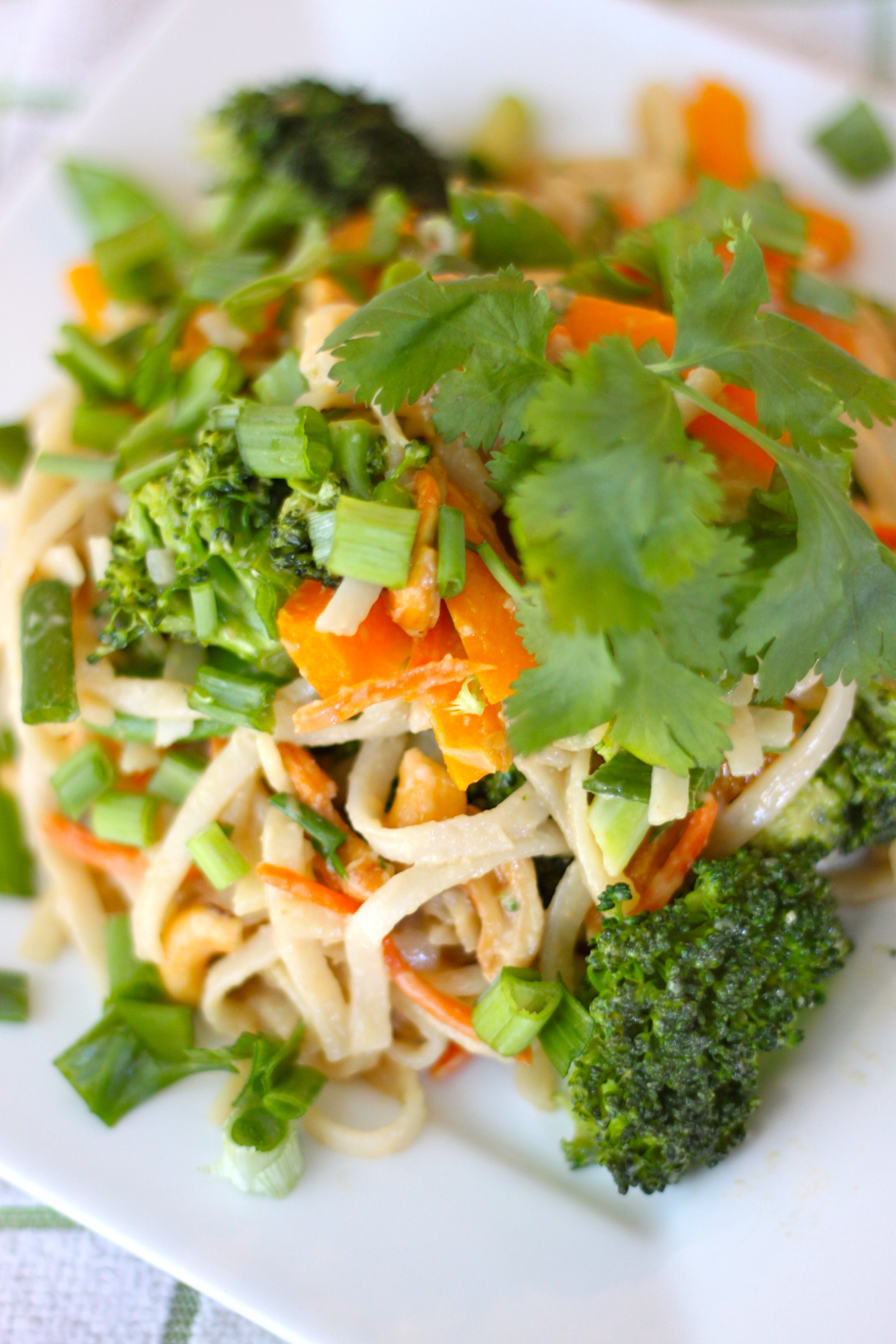 Asian Noodles with Peanut Sauce from The Diva Dish