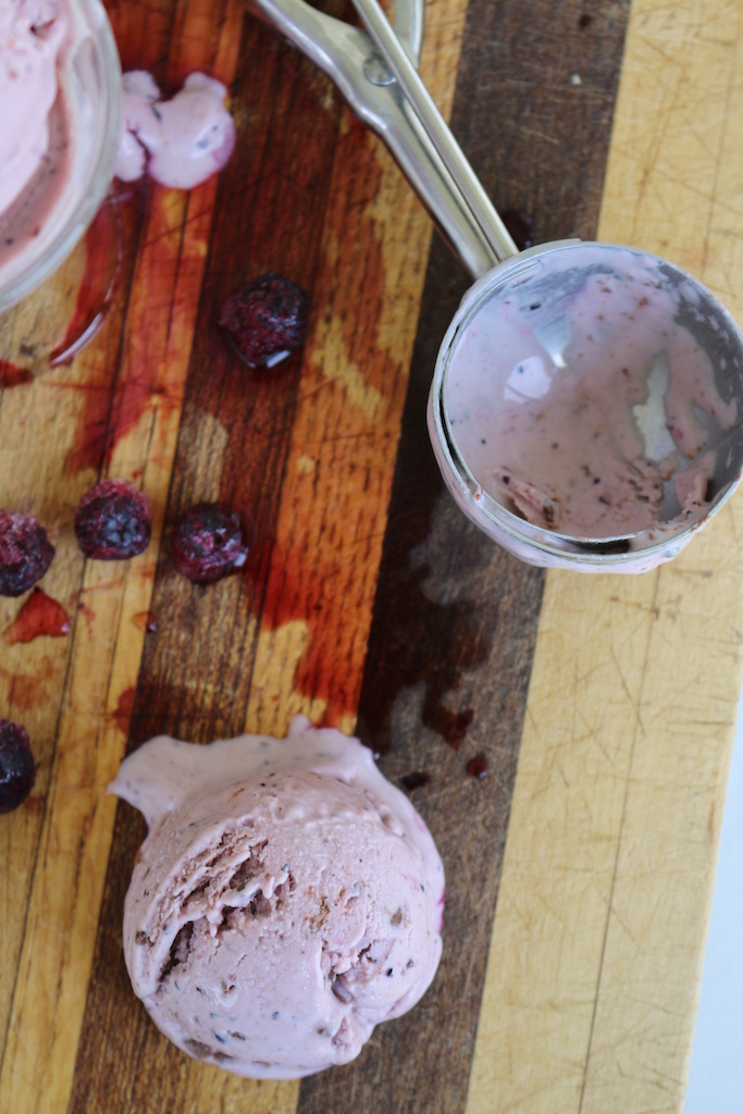 Blueberry Chocolate Chip Greek Yogurt Ice Cream