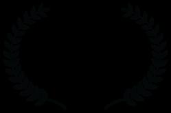 CINEMAFEST2017-STANDINGROCK-SILVERAWARD.png