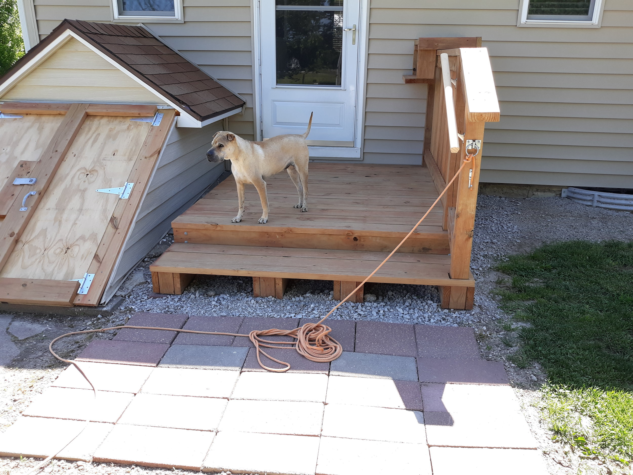 Photo of our new stoop with our dog, Chulo. He doesn't run away like our girl dog!