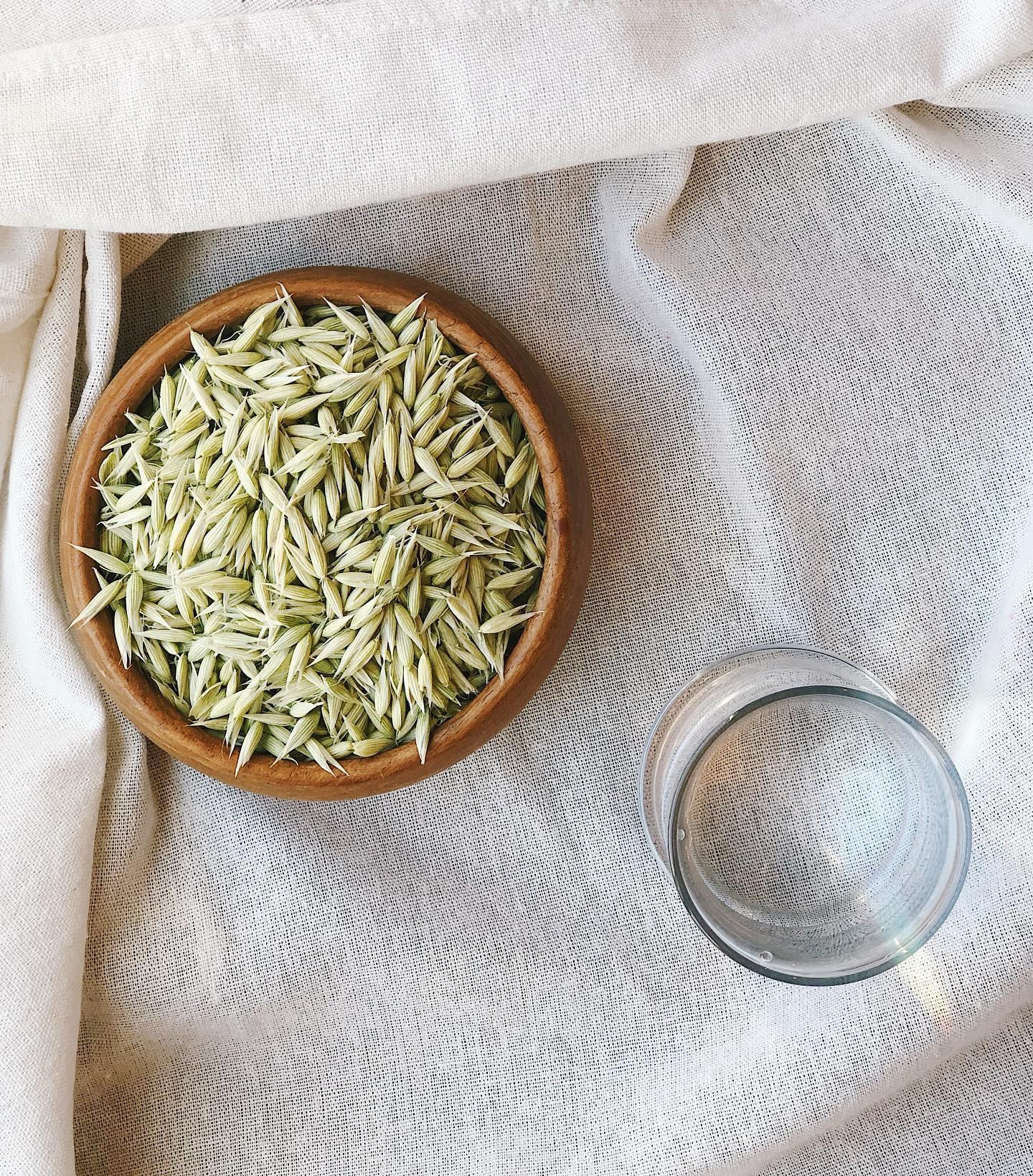 Tea Meditation, Saged Fibers