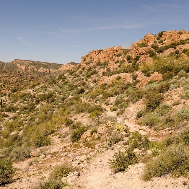 Pedro-on-the-hiking-trail-in-Superstition-Mountain-Wilderness.JPG